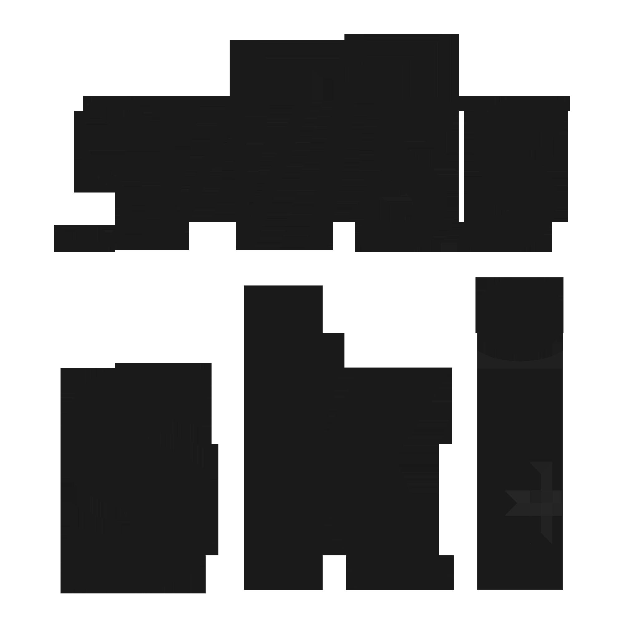 Swissski icon